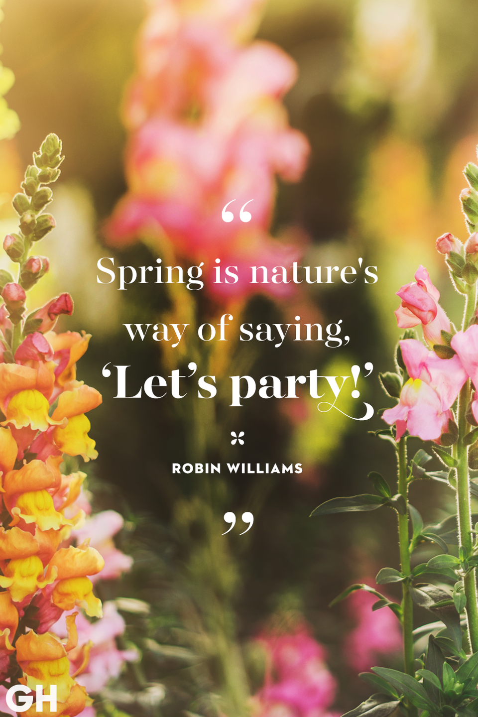 <p>Spring is nature's way of saying, 'Let's party!'</p>