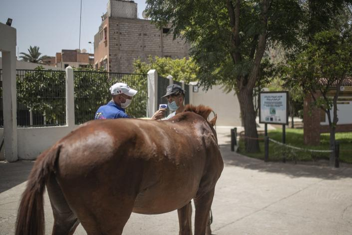 A horse owner has his temperature taken at the headquarters of SPANA shelter for animals, in Marrakech, Morocco, Wednesday, July 22, 2020. Morocco's restrictions to counter the coronavirus pandemic have taken a toll on the carriage horses in the tourist mecca of Marrakech. (AP Photo/Mosa'ab Elshamy)