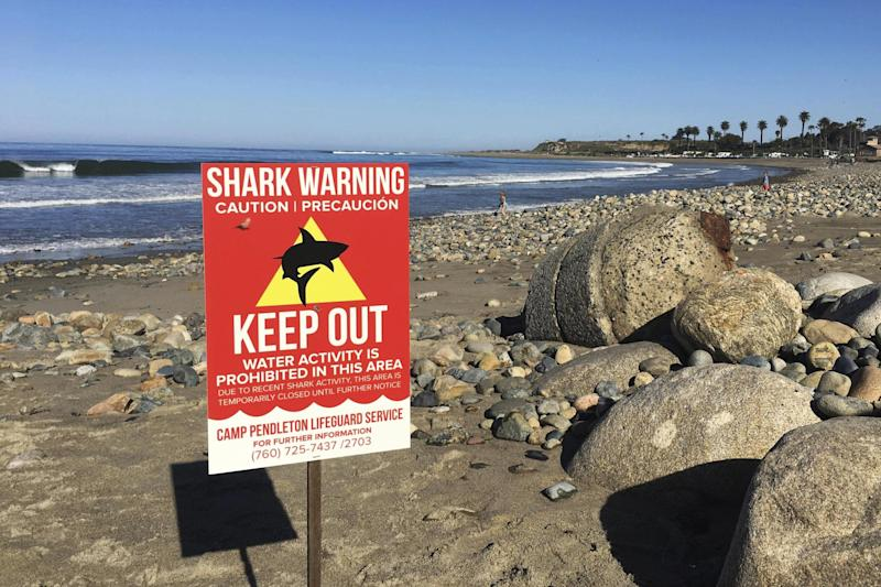 Attack: A sign warns beach goers at San Onofre State Beach after a woman was attacked by a shark in the area: AP