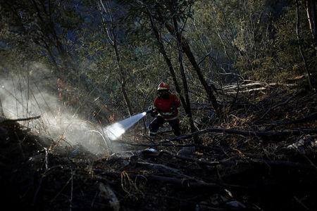 A firefighter drops water in the aftermath of the fire, next to a road between Monchique and Silves, Portugal August 9, 2018. REUTERS/Pedro Nunes