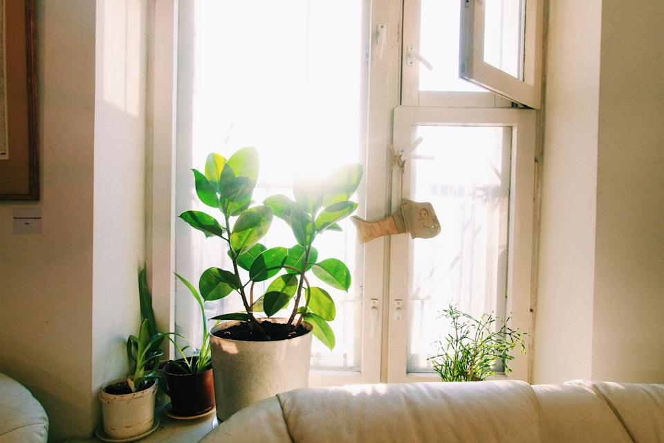 Scientist suggest opening a high window to increase ventilation. (Getty Images)
