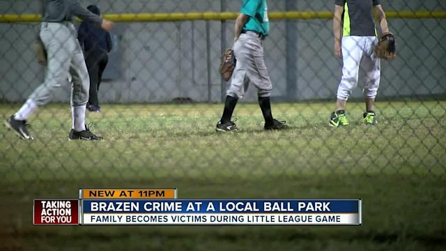 New Port Richey Police officers are investigating a brazen theft that took place Wednesday at a little league baseball field, as dozens of parents kept watch over the diamond.