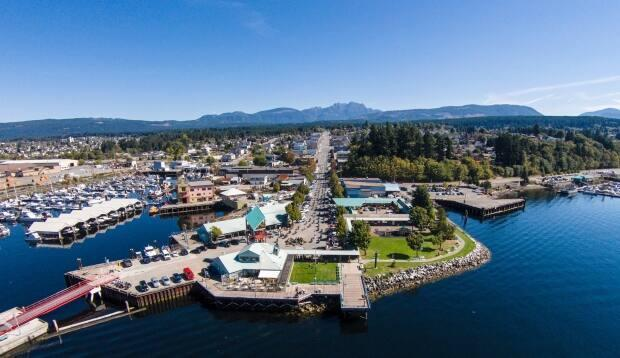 The land in question is along the waterfront of the city's waterfront and is currently owned by Western Forest Products, which once operated the Somass Division Sawmill there until operations were curtailed in the summer of 2017. (Twitter/@PAPortAuthority - image credit)