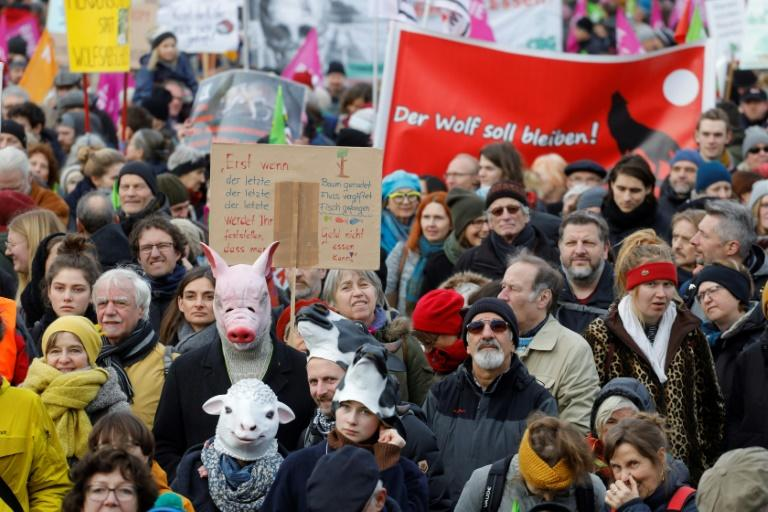 Tens of thousands of protesters turned out in Berlin on Saturday to call for Germany to do more to limit the damaging effects of farming (AFP Photo/Odd Andersen)
