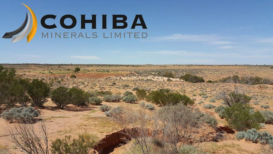 Cohiba Minerals Limited