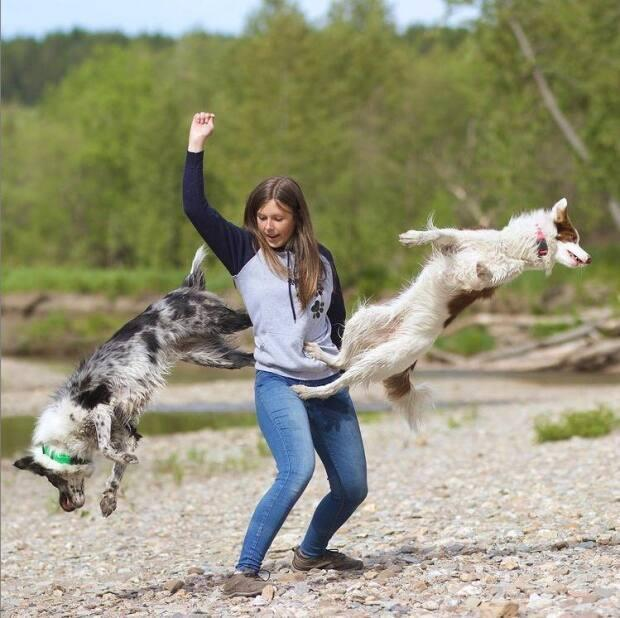 Alexandra Côté's dogs Tesla and Louka use her as a springboard to do flips as one of their tricks.  (Instagram/alexcotedogtrainer - image credit)