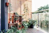 <p>Any balcony can benefit from plants. Mix your favorites to display on shelves and spruce up your floor, and don't be afraid to choose trailing varieties for a bit of drama. </p>