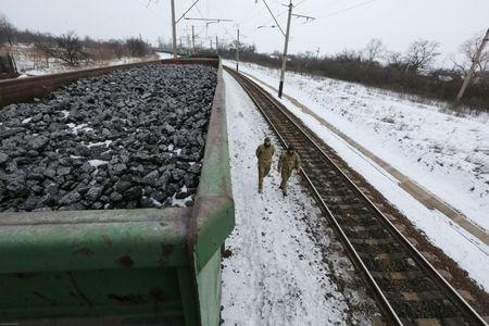 Activists walk along carriages loaded with coal from the occupied territories which they blocked at Kryvyi Torets station in the village of Shcherbivka in Donetsk region, Ukraine, February 14, 2017. Picture taken February 14, 2017.  REUTERS/Konstantin Chernichkin