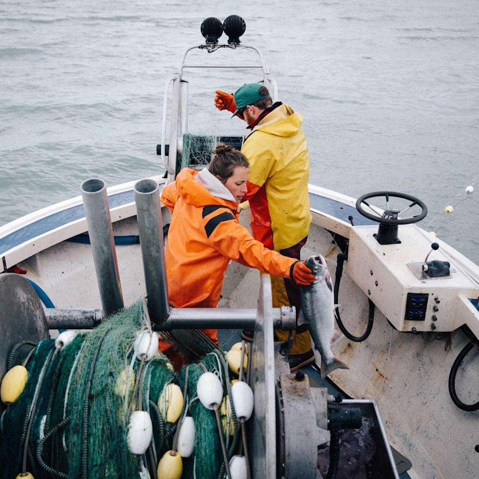 "<h1 class=""title"">Drifters-Fish-Alaska-COVID-19.jpg</h1> <div class=""caption""> Nelly and Michael Hand are changing the way they fish due to COVID-19. </div> <cite class=""credit"">Photo by Kelsey and Shaun Boyte</cite>"