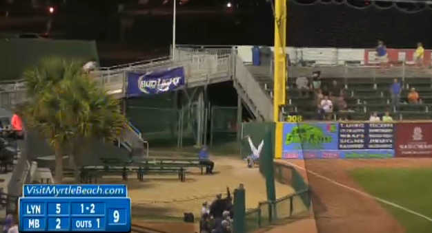 Daniel Spingola makes a head-over-heels grab. (MiLB.com)