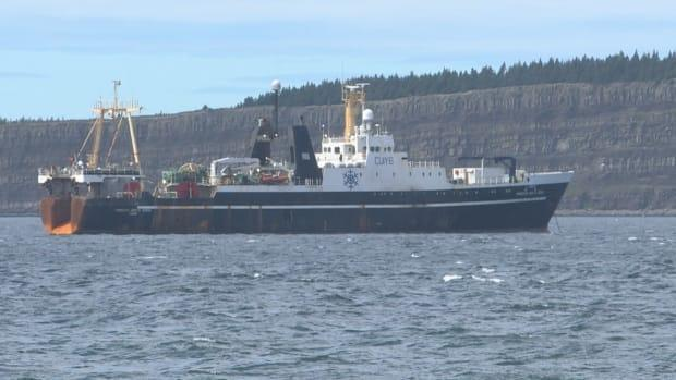 The Princess Santa Joana has left Newfoundland and Labrador as of Wednesday, with all but one of its passengers reportedly recovering from COVID-19. (Emma Grunwald/CBC - image credit)