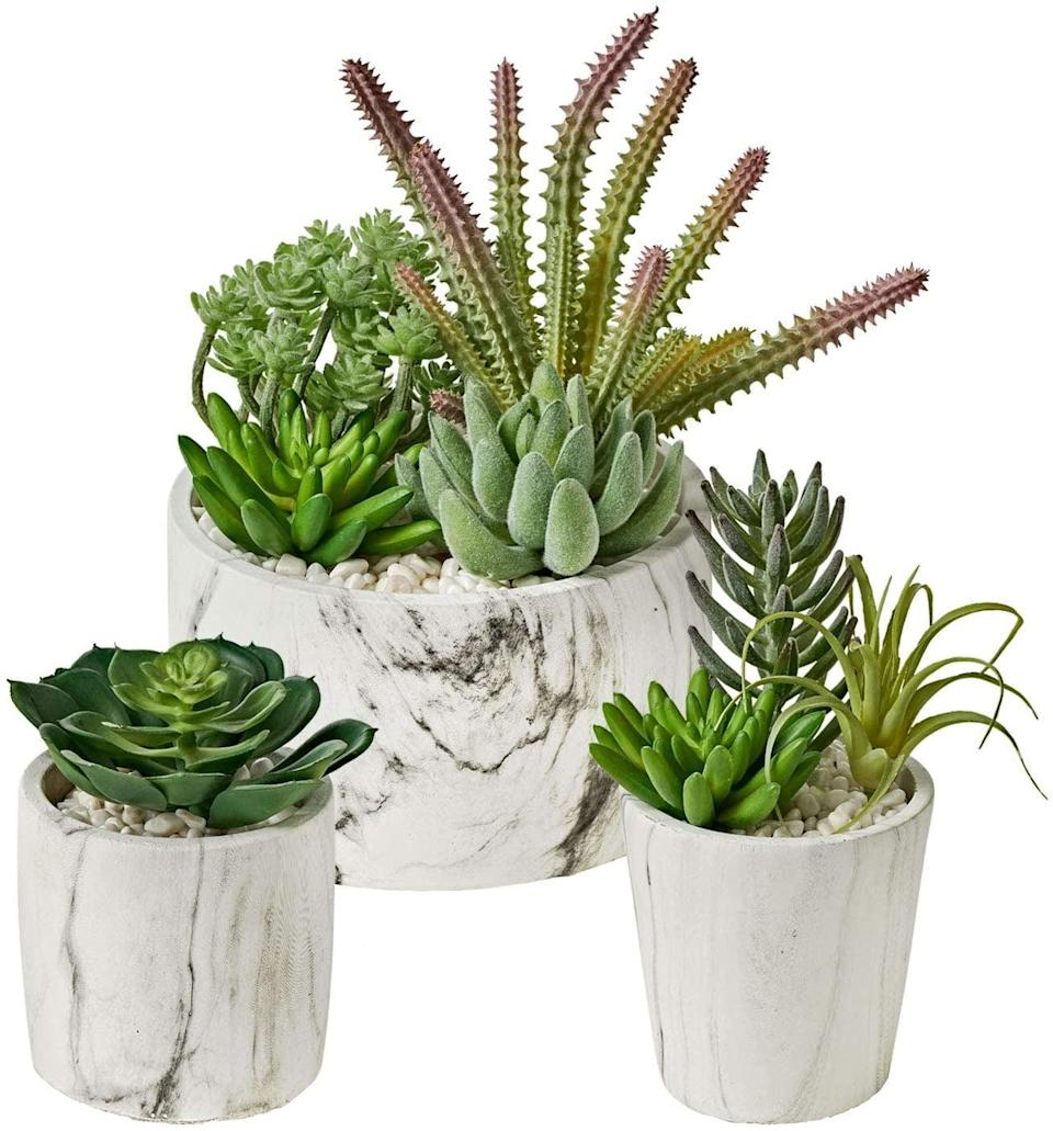 <p>If you need a variety of sizes to decorate your home, the <span>MOTINI Artificial Succulent Plants Set of 3</span> ($33) is a gorgeous choice.</p>