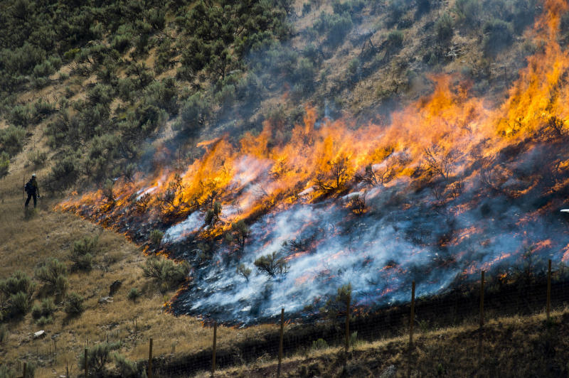 "FILE - In this July 30, 2018, file photo, firefighters control the Tollgate Canyon fire as it burns near Wanship, Utah. The Trump administration is proposing an ambitious plan to slow Western wildfires by bulldozing, mowing or revegetating large swaths of land along 11,000 miles of terrain in the West. The plan announced this summer would create strips of land known as ""fuel breaks"" in parts of Idaho, Oregon, Washington, California, Nevada and Utah. (Rick Egan/The Salt Lake Tribune via AP, File)"