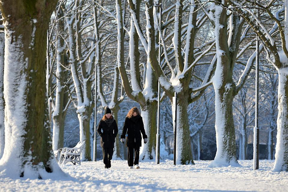 Leicester, Leicestershire, UK 25th Jan 2021. UK. Weather. Snow. A snowy morning in Victoria Park in Leicester City. Alex Hannam/Alamy Live News