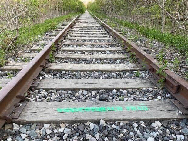 The words 'Wonscotonach Trail' have been spray painted onto a section of Don Branch track near the Evergreen Brickworks.