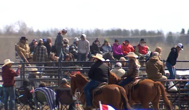 Hundreds attended a rodeo near Bowden, Alta., on May 1 and 2 in defiance of public health restrictions, despite surging COVID-19 cases. (Justin Pennell/CBC - image credit)