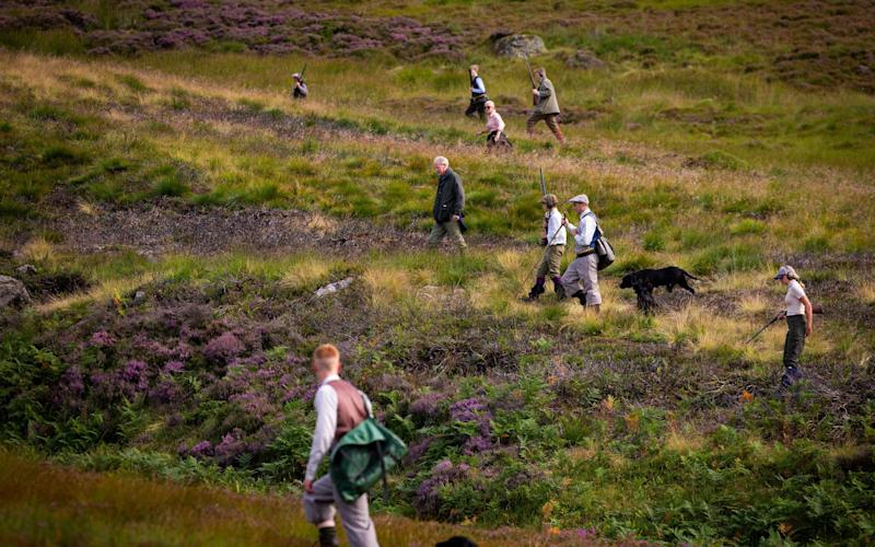 A shooting party set off on first day of the grouse shooting season - Getty