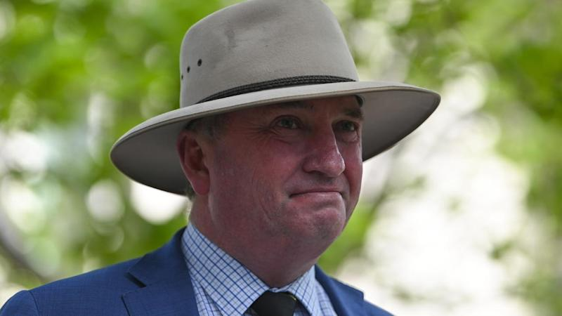 """Barnaby Joyce says two people who died in the NSW bushfires """"most likely"""" voted for the Greens"""