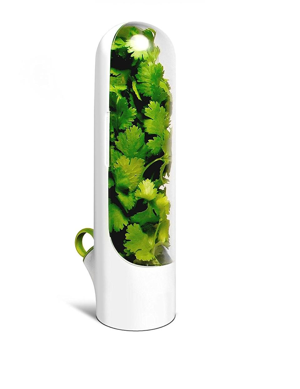 <p>Make sure your herbs stay as fresh as possible by storing them in this <span>Herb Saver Best Keeper</span> ($20). Simply refill it with water every three to five days, and herbs will last longer than over.</p>