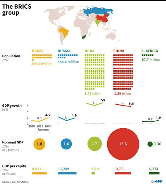 Factfile on the BRICS group of countries (AFP Photo/John SAEKI)