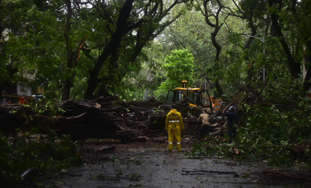 MUMBAI, INDIA - JUNE 3: BMC workers clearing the tree fallen due to to gusty winds, after Nisarg Cyclone hits coastal line at Marine Lines on June 3, 2020 in Mumbai, India. Alibaug witnessed wind speeds of up to 120 kilometres per hour. Although the cyclone made the landfall just 95 kilometres from Mumbai, the Maharashtra capital largely escaped its wrath. (Photo by Anshuman Poyrekar/Hindustan Times via Getty Images)