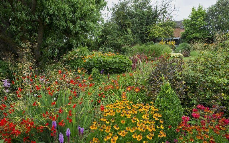 Yew Tree Farm won the Daily Mail National competition in 2019 and were Gardener's World Magazine finalists in 2018 - National Garden Scheme