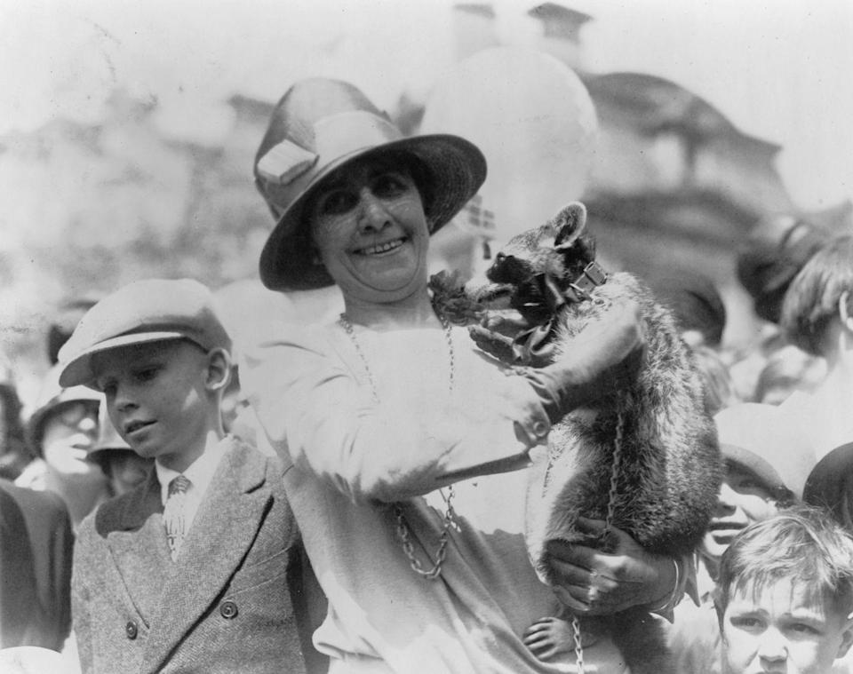 """<p>First Lady Grace Coolidge had an interesting companion during her husband's time in the White House: a pet raccoon named Rebecca. The White House Raccoon, <a href=""""https://www.whitehousehistory.org/raccoons-at-the-white-house"""" rel=""""nofollow noopener"""" target=""""_blank"""" data-ylk=""""slk:as Rebecca became known"""" class=""""link rapid-noclick-resp"""">as Rebecca became known</a>, was sent to the First family as a gift intended <a href=""""https://www.whitehousehistory.org/raccoons-at-the-white-house"""" rel=""""nofollow noopener"""" target=""""_blank"""" data-ylk=""""slk:to be served for Thanksgiving dinner"""" class=""""link rapid-noclick-resp"""">to be served for Thanksgiving dinner</a>, but the First Lady decided to keep her as a pet instead. Grace was known to trot out Rebecca during official White House events, like the <a href=""""https://www.whitehousehistory.org/raccoons-at-the-white-house"""" rel=""""nofollow noopener"""" target=""""_blank"""" data-ylk=""""slk:Easter Egg Roll"""" class=""""link rapid-noclick-resp"""">Easter Egg Roll</a>. </p>"""