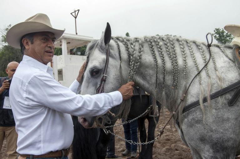 A tough-talking former rancher who doesn't shy away from controversy or cussing, Jaime Rodriguez Calderon already made history by becoming the first independent candidate to be elected governor, in 2015