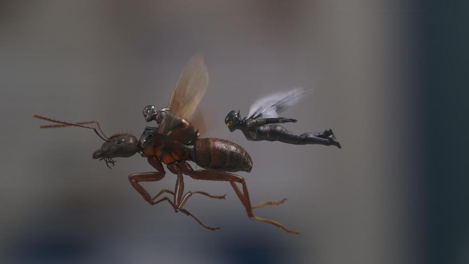 L to R: Ant-Man/Scott Lang (Paul Rudd) and The Wasp/Hope van Dyne (Evangeline Lilly) (Film Frame/©Marvel Studios 2018)