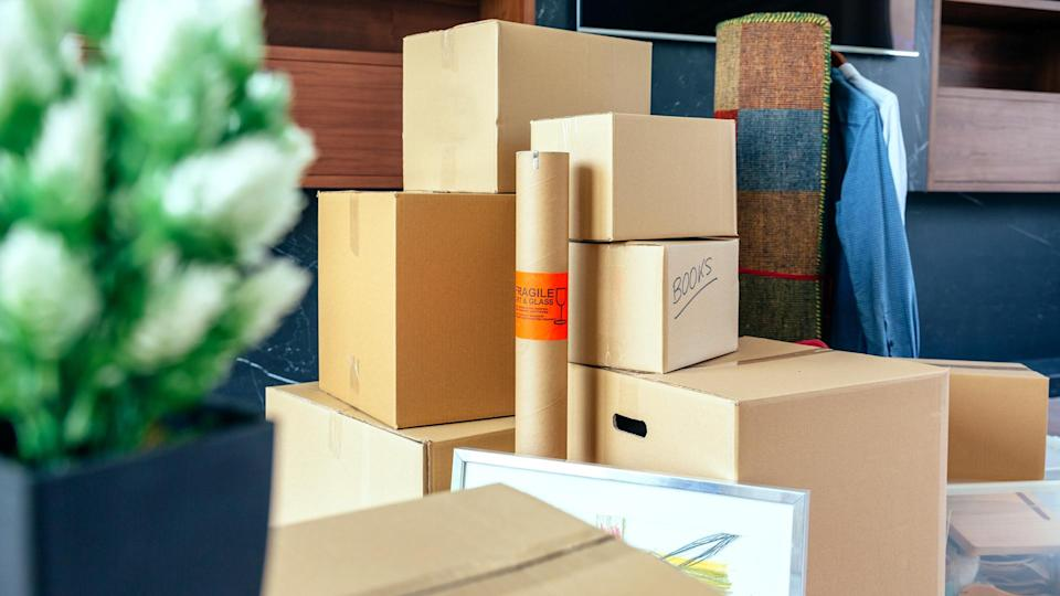 Moving with stacked boxes and plant.
