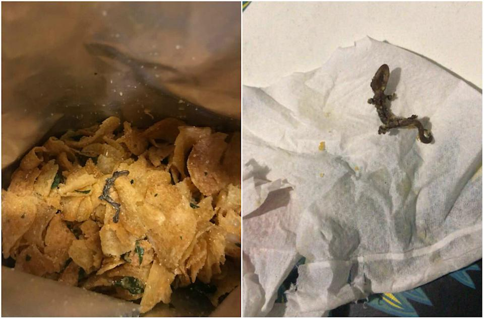 Dead lizard found in Irvins Salted Egg potato chips bought by Serina. (PHOTO: Shawnne G)