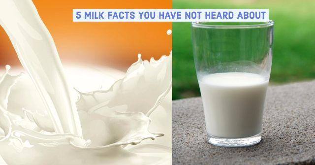 After a Year of Research & Debate, Here's Why I Gave Up Milk!