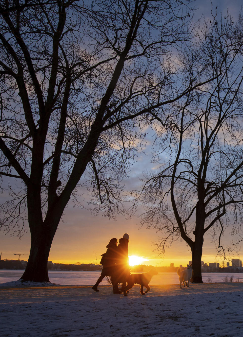 People with dogs walk in the sunrise at the Alster in Hamburg, Germany, Thursday, Feb.11, 2021. (Christian Charisius/dpa via AP)