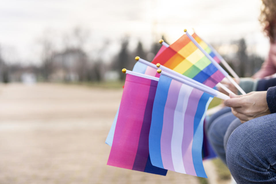Flags for LBGTQi rights hold by different people