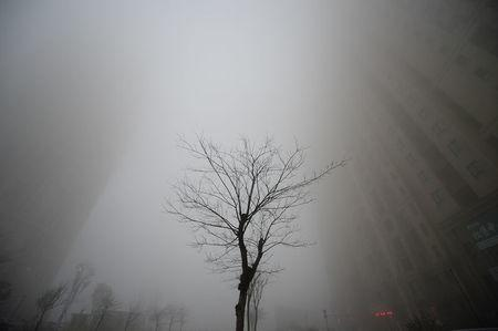 Buildings are seen in heavy smog during a polluted day in Jinan, Shandong province, China. REUTERS/Stringer