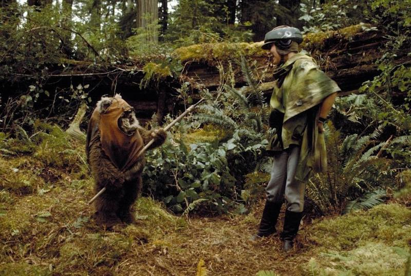 Wicket the Ewok (Warwick Davis) meets cute with Princess Leia (Carrie Fisher) in 'Return of the Jedi.' (Photo: Lucasfilm)