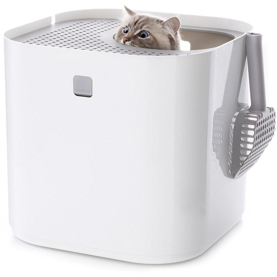 <p>We're not ready to splurge on an automated litter box just yet, mostly because the <span>Modkat Litter Box</span> ($90) does such a great job of keeping litter dust and trackage contained. We keep it tucked behind the couch in the living room, and we never notice smells or stray mess. I recommend this box to all my fellow cat parents!</p>