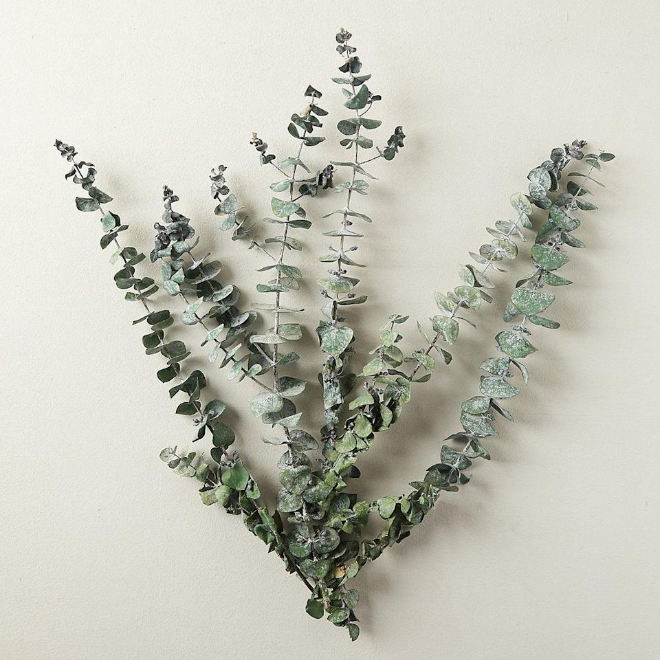 "<br><br><strong>Terrain</strong> Preserved Spiral Eucalyptus Bunch, $, available at <a href=""https://go.skimresources.com/?id=30283X879131&url=https%3A%2F%2Fwww.shopterrain.com%2Fproducts%2Fpreserved-spiral-eucalyptus-bunch"" rel=""nofollow noopener"" target=""_blank"" data-ylk=""slk:Terrain"" class=""link rapid-noclick-resp"">Terrain</a>"