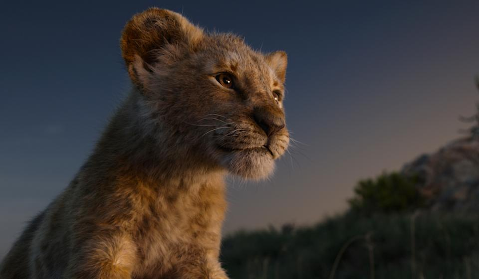 JD McCrary voices young Simba in Disney's remake of 'The Lion King' (Photo: Walt Disney Studios Motion Pictures / courtesy Everett Collection)