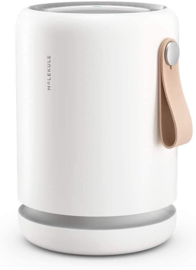 "<h2>20% Off Molekule Mini+ Small Room Air Purifier</h2><br>Snag $100 off this top-rated and aesthetically-pleasing purifier that utilizes particle-sensor and PECO-powered technology to remove and destroy everything from allergens to pollutants and mold from the air inside your living space. <br><br><strong>Molekule</strong> Mini+ Small Room Air Purifier with Particle Sensor and, $, available at <a href=""https://amzn.to/39nVcQq"" rel=""nofollow noopener"" target=""_blank"" data-ylk=""slk:Amazon"" class=""link rapid-noclick-resp"">Amazon</a>"