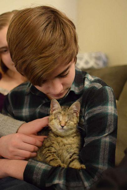 Ilene the kitten was found wrapped in a pile of trash by a good Samaritan in California and brought to the Oregon Humane Society. She has a condition which resulted in her blindness. She is held in this undated photo with one of her owners, Elijah, 14. (Oregon Humane Society )