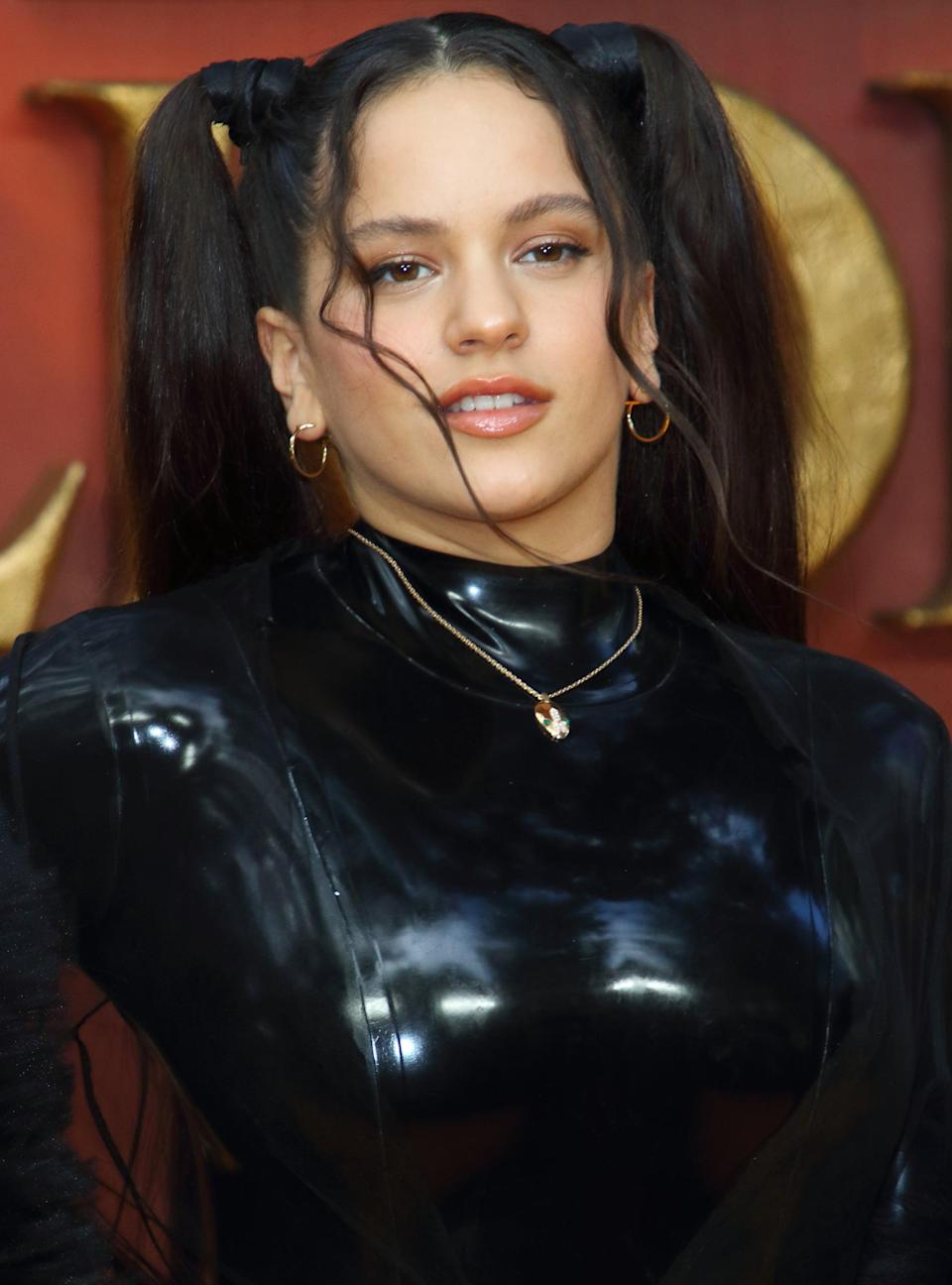 <p>Rosalía styled her hair in high pigtails with two face-framing pieces curled in the front.</p>