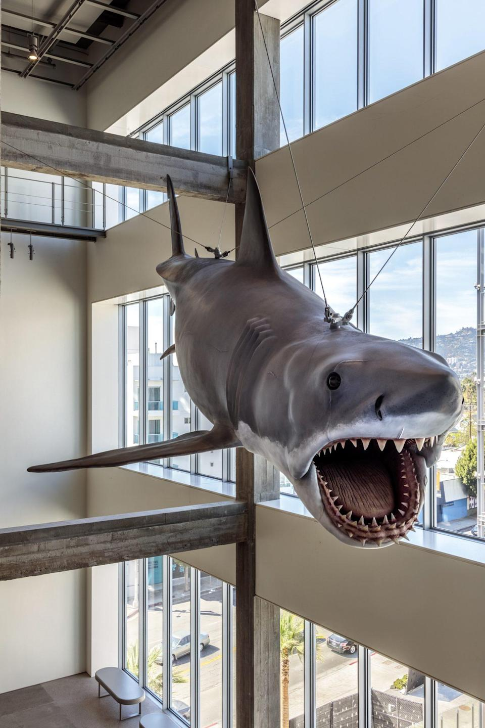 <p>The full-sized shark model from <em>Jaws</em> is suspended above a set of escalators, for an extra thrill. </p>