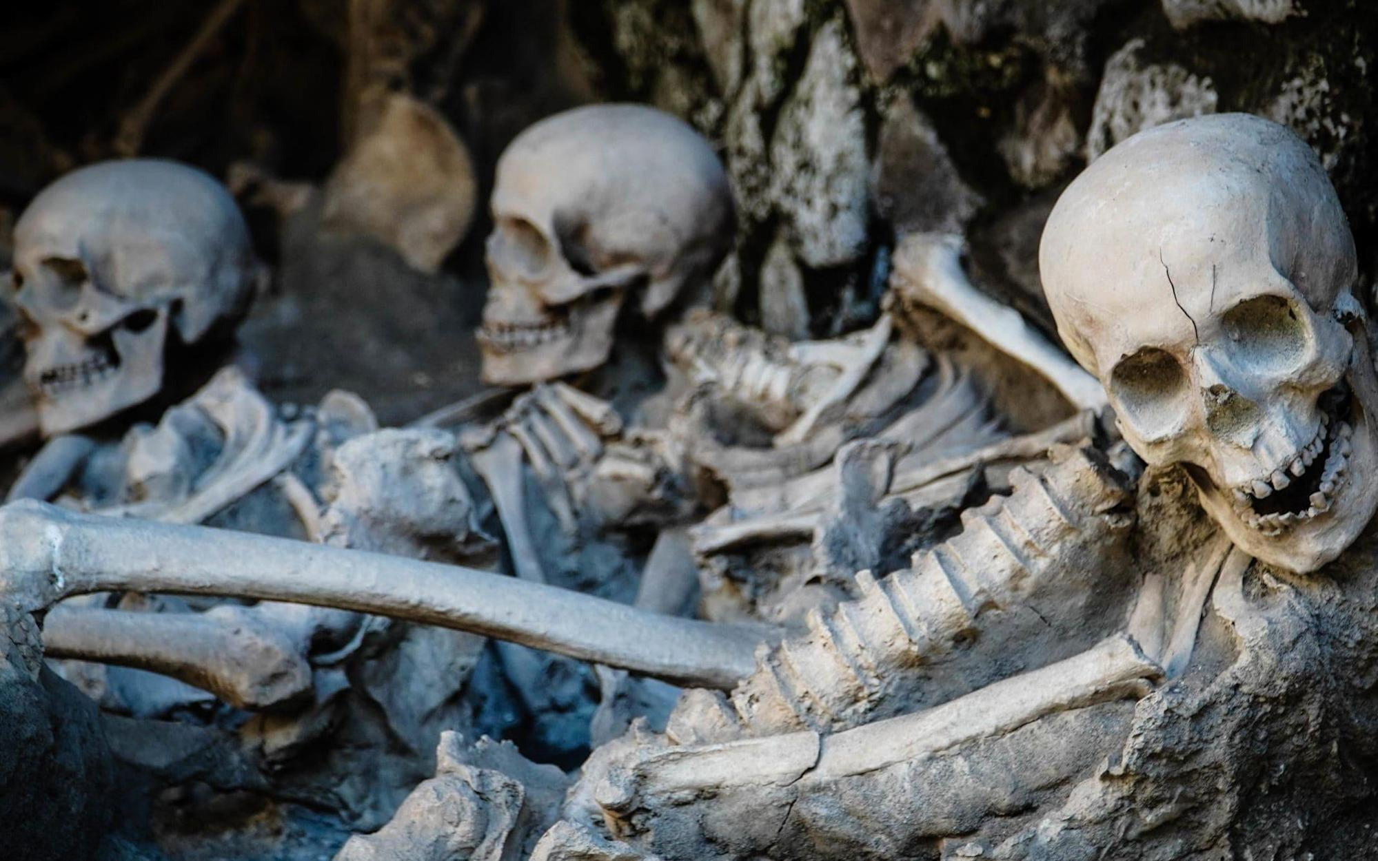 Hero of Herculaneum: skeleton may be saviour sent to defy the volcano