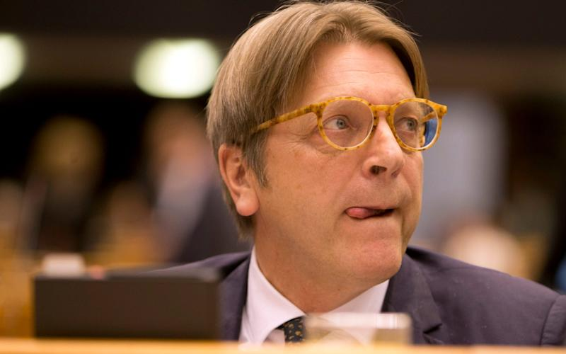 MEP Guy Verhofstadt has given his backing to the idea - Credit: AP