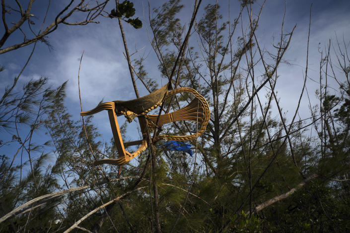 A chair is caught in a grove blown there by Hurricane Dorian's powerful winds, in Pine Bay, near Freeport, Bahamas, Sept. 4, 2019. (Photo: Ramon Espinosa/AP)
