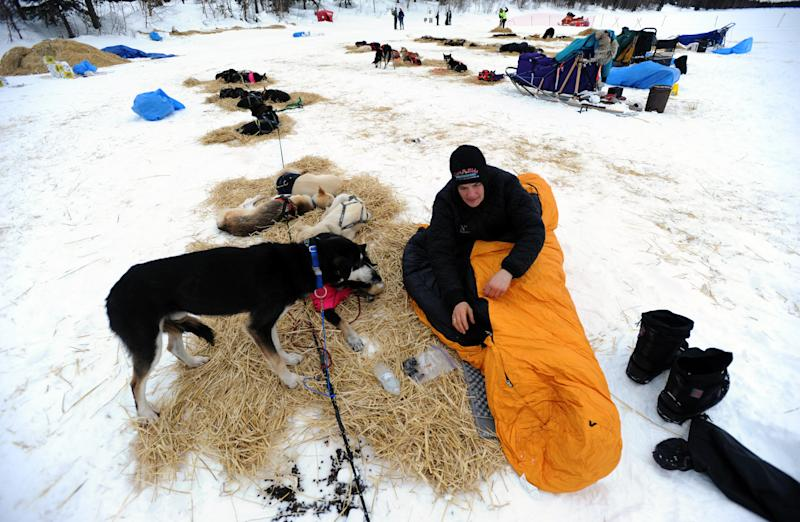 Christine Roalofs prepares to rest with her dogs at the Finger Lake checkpoint in Alaska during the Iditarod Trail Sled Dog Race on Monday, March 4, 2013. (AP Photo/The Anchorage Daily News, Bill Roth)