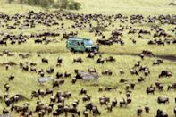 "One of the most sought-after safari experiences is witnessing the Great Migration, when millions of zebras, wildebeests, and other herd animals travel from Tanzania's Serengeti to the Masai Mara in Kenya. Alice Daunt, a travel specialist at Daunt Travel, suggests catching it from the Masai Mara, but cautions that the ""there are literally eight beds at the best camps,"" and just a couple camps she sends her clients to—not to mention a narrow window of travel (typically August through September). For those reasons, she suggests booking even a couple years in advance. (Roar Africa, another of our preferred travel planners, offers a <a href=""http://secure-web.cisco.com/1LrJ9_DdZEwLVQ9xRkinbfHlEWXfVpth0w382APGKiyae_51x3KwfelTrDszFguqFon0tVRgV4etpkZGqLqqcLDTfGgvnZiTP3En0fLi5PWNhdV45x59r8-2SIxc13khY7Jb01qgdK4JYOaWVslBsUfFWbp_XO16heJya2WqRWBvIhW4bJdFwSMjABMJJgVsgzRzOKd3sCQyZEqbmsTXebjAv65x3JwmYgCbm5fM4F7bhuV3sV2zyFZmaqf57v-JAGkCTQ52xwFdqWN6YsQwPGG6NBJHcjabXws1tN3PEE4Awz7mKF_OKXkLE87DZDisjEglaibQ3p9HxvyDrQsAVkfC2alnAebeN3G0PkVIDN-s/http%3A%2F%2Ftravel.roarafrica.com%2Fprint%2Fitinerary-html%2F10617"" rel=""nofollow noopener"" target=""_blank"" data-ylk=""slk:Kenyan helicopter safari tour"" class=""link rapid-noclick-resp"">Kenyan helicopter safari tour</a> with August dates that'll deliver an unforgettable aerial view of the animals below.)"