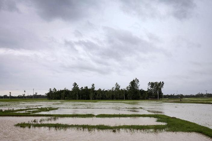 A general view of the landscape of the Bangladeshi village of Kalai, some 300 km north-west of Dhaka (AFP Photo/Suvra Kanti Das)