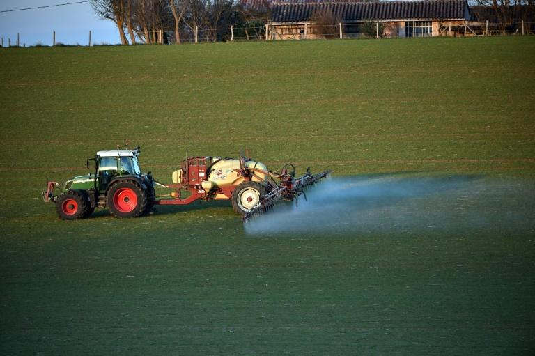 France is one of the EU's heaviest users of glyphosate, which is sprayed on food crops but also widely outside of agriculture on public lawns and in forestry